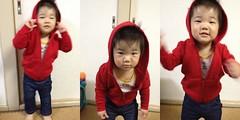 赤いパーカーを着るとらちゃん(2012/4/10)
