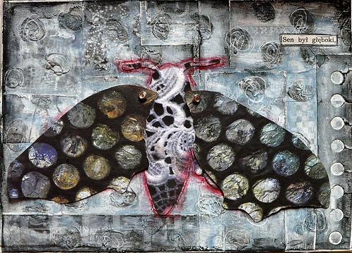 a dream moth