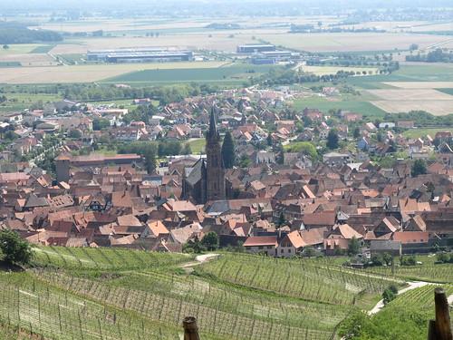 dambach la ville- chateaux- bernstein- ortenbourg 052