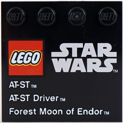 9679 AT-ST and Endor