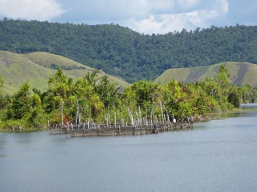 Papoua12-Sentani-Lac-Doyo Lama (22)1