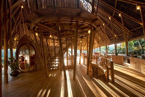 Bambus House v06