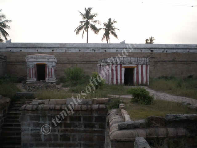 A view of two of the Shivalingams around Brahma Theertham. Tirupattur Brahmapureeswarar Koil.