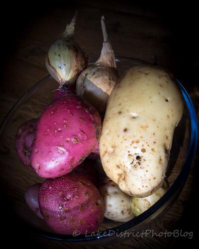 家庭菜園で収穫したジャガイモと玉ねぎ