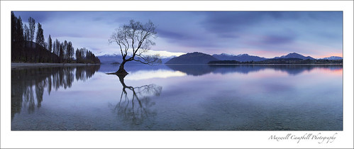 longexposure morning blue winter newzealand panorama sun lake snow mountains cold tree sunrise reflections landscape le hour southisland lakewanaka