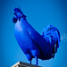 Blue Chicken against a blue sky by Fred Dawson