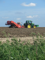 Cultivating near Worlaby