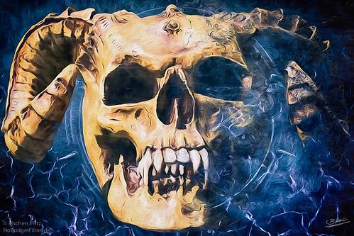 Skull_II.jpg