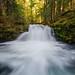 Whitehorse Falls by David Pasillas