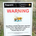 Small photo of Africanized bee warning