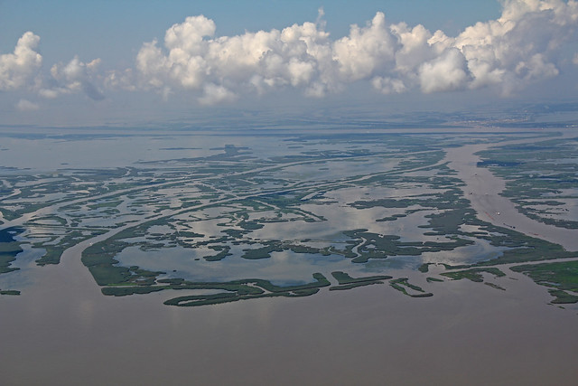 Mouth Of Mississippi River 81