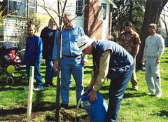 treeplanting2002