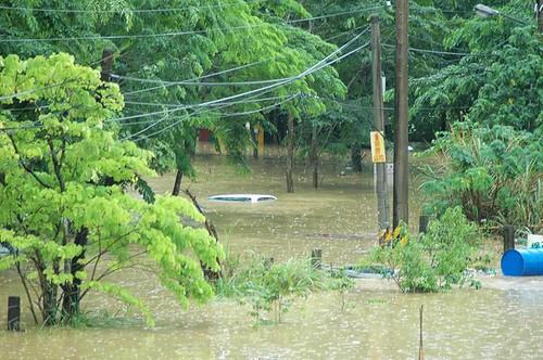 2012年土城彈藥庫淹水畫面。廖崇賢攝。