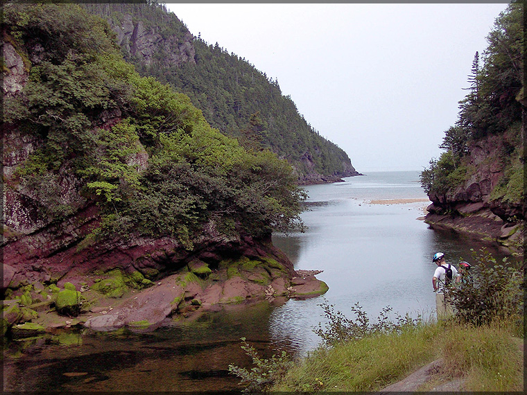 PDRM2631_Fundy_National_Park