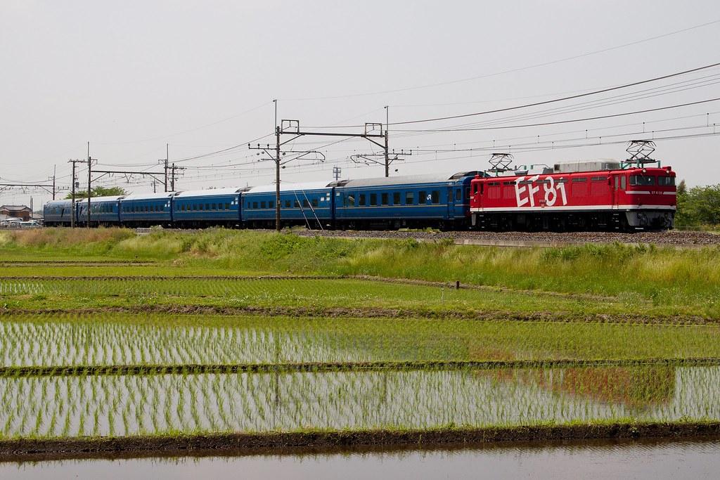 9501 EF81-95+PC