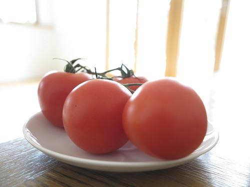 Tomato Tomate Tomaten Tomatoes Pomodoro Food Essen Nahrung