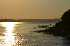 Lake Constance at sunset