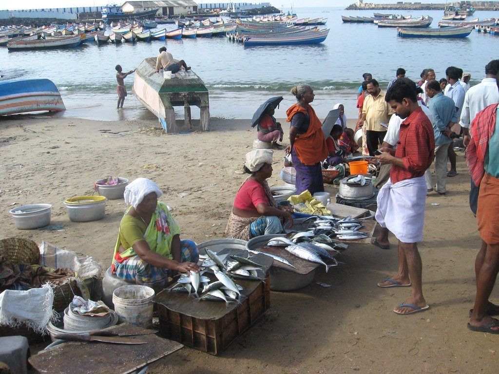 India produces 5.54 per cent of the global fish.