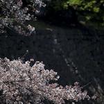 0404_chiyoda-29