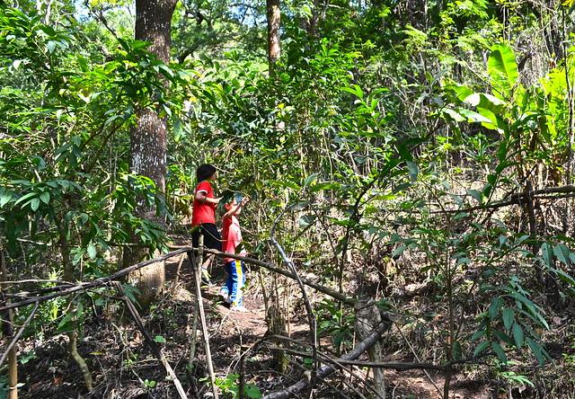 hiking trails - Green Rush Nature Park, Guatemala