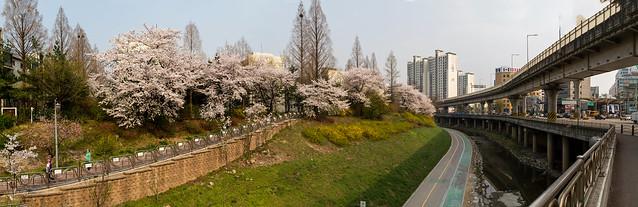 4월이라는 봄 : Spring April