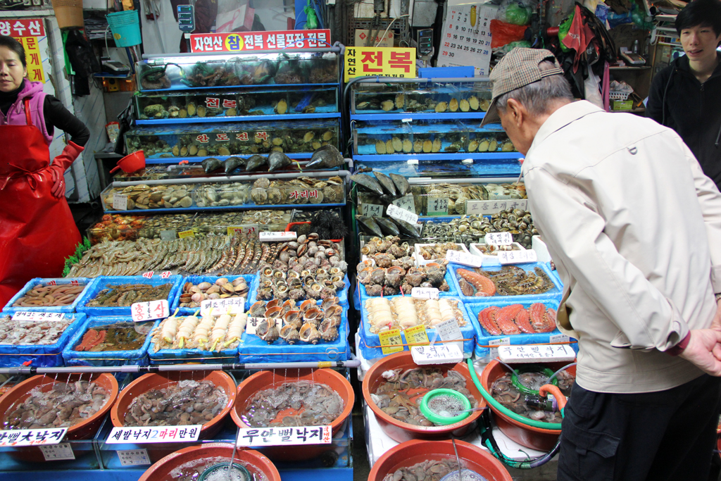 Examining seafood to make sure it's extremely fresh