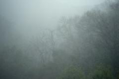 The Storm:  3 April 2012