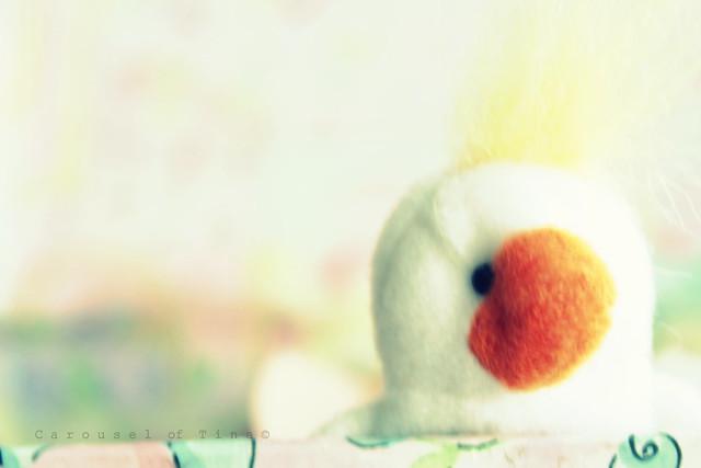 Un pato...