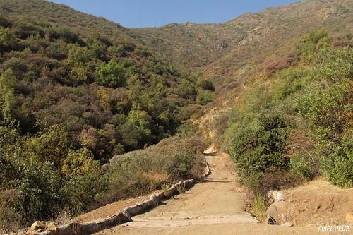 365-59 | Sendero de Chile (Lo Cañas) | Caminos - Paths