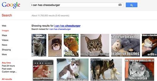 I can has cheeseburger