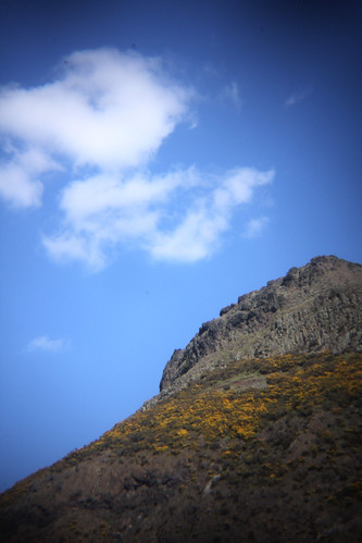Arthur's seat in the sun 14