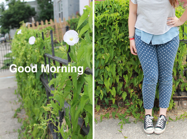 Morning Glory outfit: AG polkadot Stevie ankle jeans from Anthropologie, black Converse lowtop sneakers, sleveless button-down chambray shirt, cropped gray sweatshirt from Stylemint