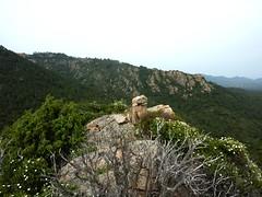 Arrivée au sommet : le cairn sommital de la Punta Sant'Andria