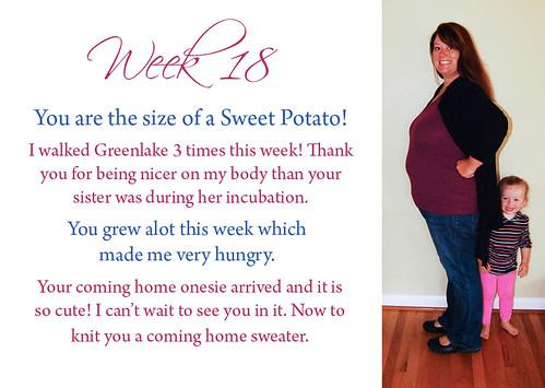 18 weeks