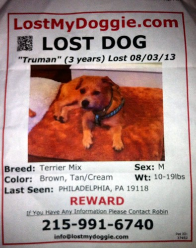 Find  their doggie Truman