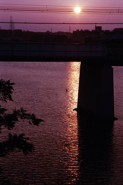 「翳り」 夕陽 #224 かず