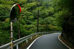 山道走行イメージ