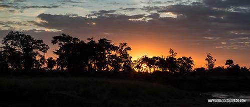 Kenia - Masai Mara 61