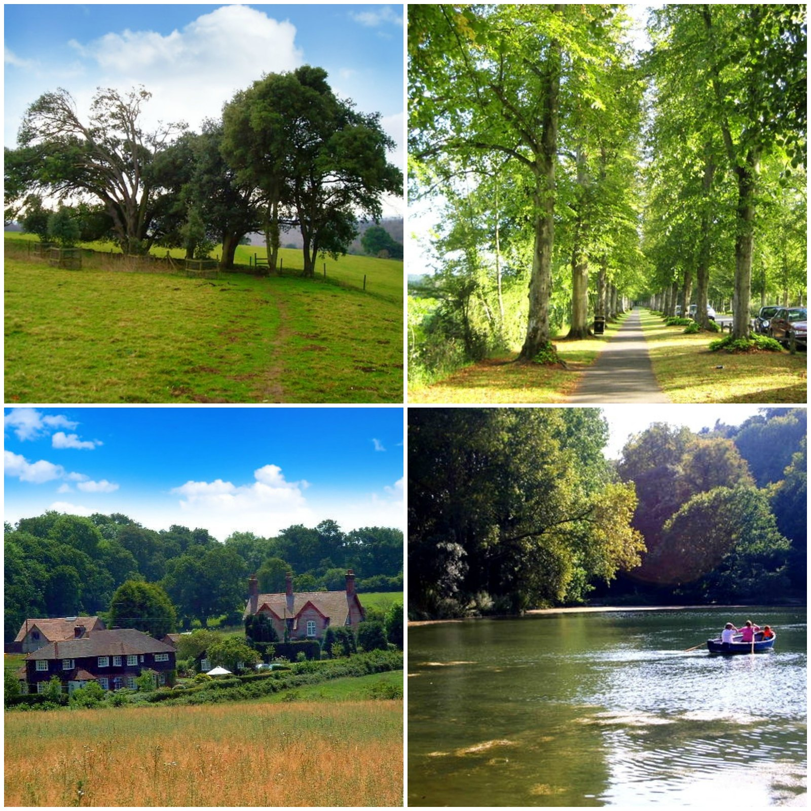 Top right clockwise. Monarch's Way. (Credit Peter Holmes); Mill Road lined with lime trees on both sides (Credit Nigel Cox); Houses at Crossbush (Credit Chris Shaw); Row boats out on Swanbourne Lake (Credit Shaun Ferguson).jpg