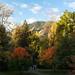 Samuel Forsyth- Green Mountain and CU Boulder