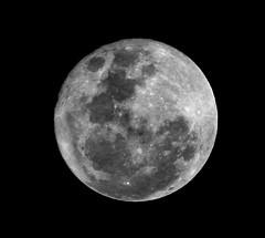 Super Luna 2016