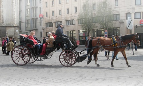 Carriage in Ghent