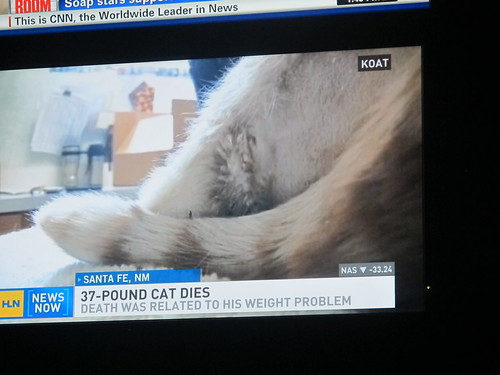 Atlanta: Quality journalism from HLN