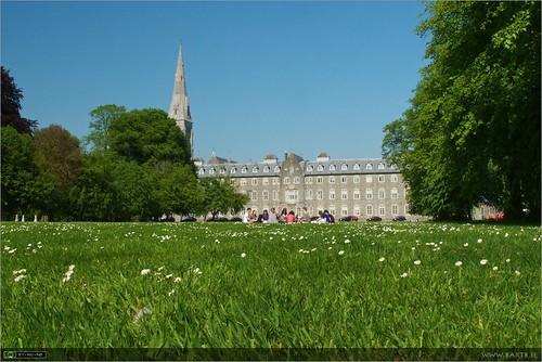 St. Patrick's College lawn