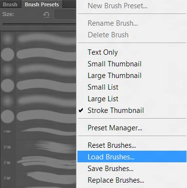 load-brushes