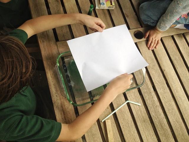 Maker Scout   Paper Kraft