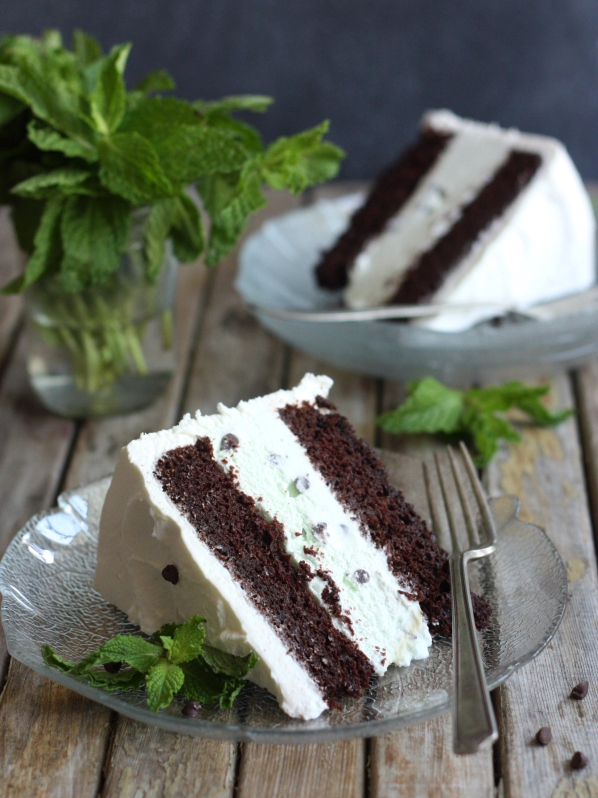 Mint Chocolate Chip Ice Cream Cake - Completely Delicious