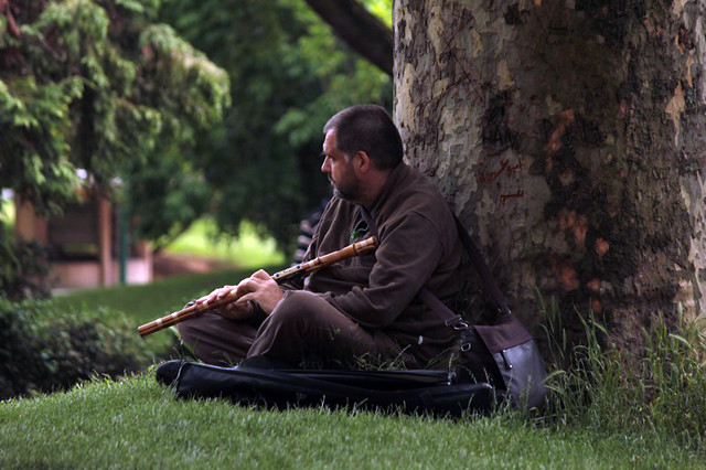 musicista al jardin du Trocadero