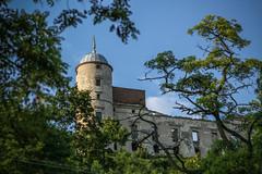 Zamek w Janowcu / Castle in Janowiec, Poland