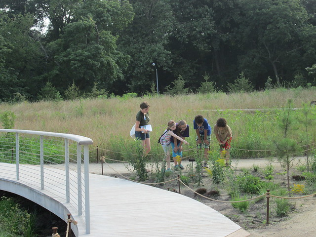 Tweens explore the newly expanded Native Flora Garden on a nature walk. Photo by Ashley Gamell.